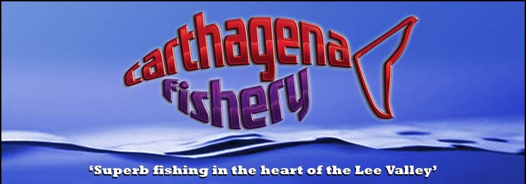 Carthagena Fisheries - Superb fishing in the heart of the Lee Valley