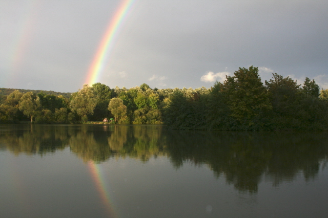 Carp at the end of the rainbow?