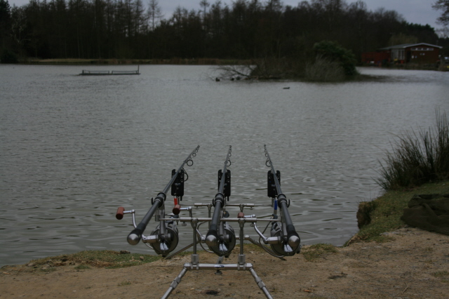 Waiting for a Carp to bite